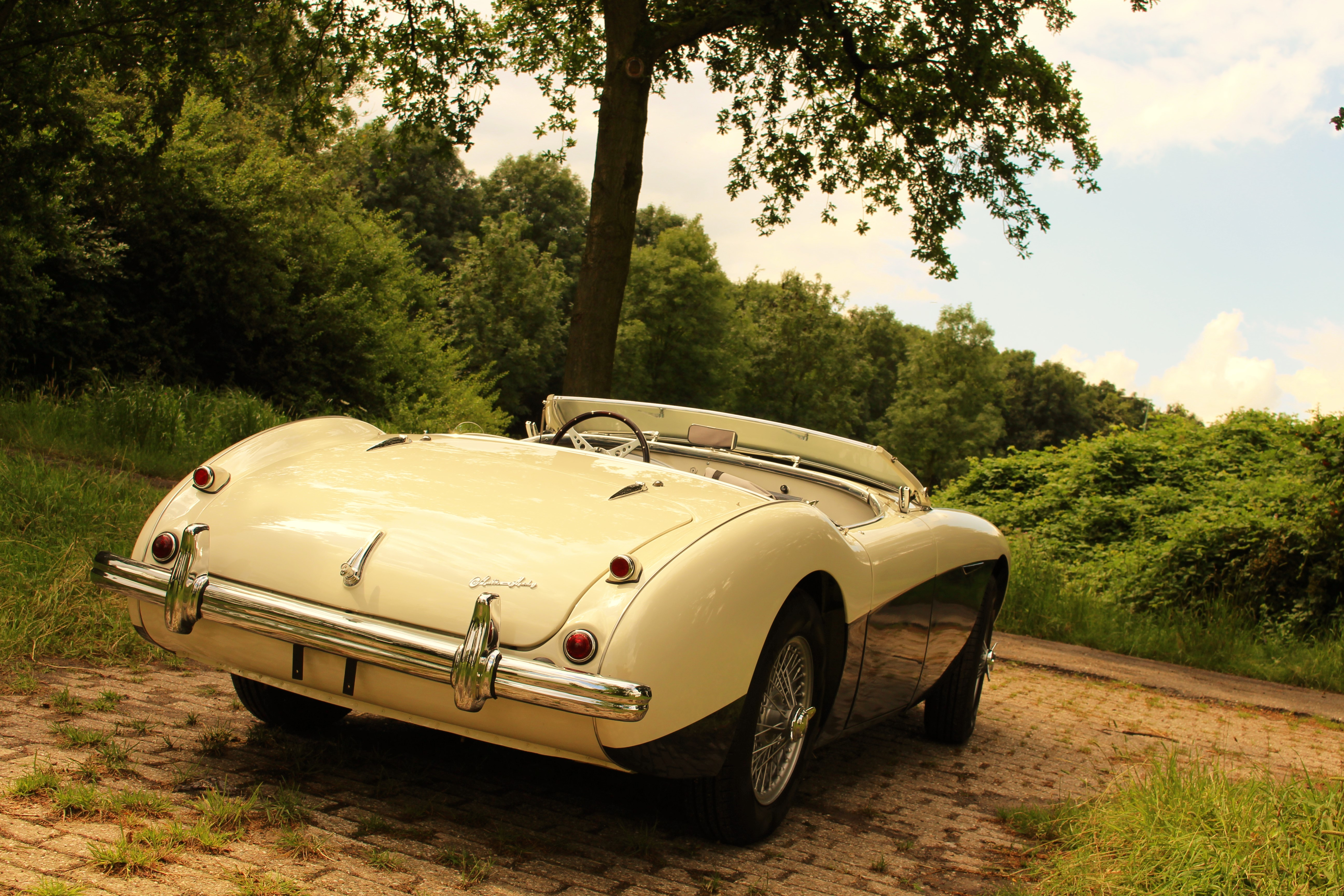 austin healey 100m for sale classic sports cars holland. Black Bedroom Furniture Sets. Home Design Ideas